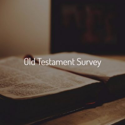 Bible College Online- Old Testament Survey Taught By Dr. Michael Callaghan