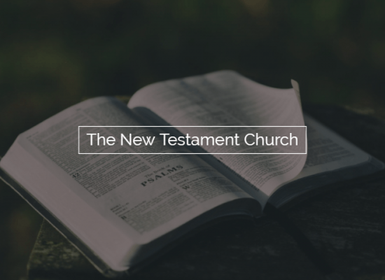New Testament Church